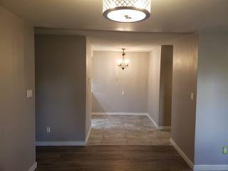 Photo 7: B1 9325 104 Avenue in Edmonton: Zone 13 Condo for sale : MLS®# E4210461