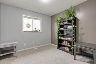 Photo 30: 2172 Luxstone Boulevard: Airdrie Detached for sale : MLS®# A1032689
