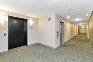 Photo 27: 204 4030 Borden St in : SE Lake Hill Condo for sale (Saanich East)  : MLS®# 859944