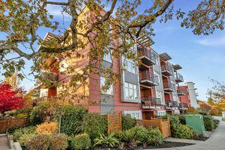 Photo 30: 204 4030 Borden St in : SE Lake Hill Condo for sale (Saanich East)  : MLS®# 859944
