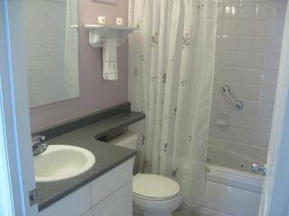 Photo 11: Beautiful 3 Bedroom Bi-Level