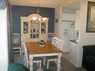 Photo 6: Beautiful 3 Bedroom Bi-Level