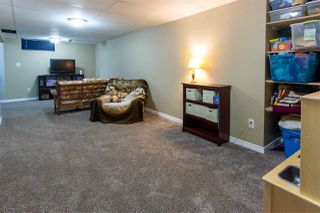 Photo 22: 15 GALLOWAY Drive: Sherwood Park House for sale : MLS®# E4172759