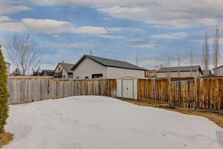 Photo 25: 25 CRANBERRY Way SE in Calgary: Cranston Detached for sale : MLS®# C4292259