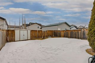 Photo 24: 25 CRANBERRY Way SE in Calgary: Cranston Detached for sale : MLS®# C4292259