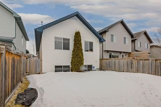 Photo 26: 25 CRANBERRY Way SE in Calgary: Cranston Detached for sale : MLS®# C4292259