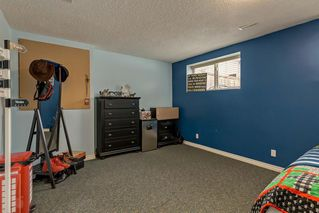 Photo 22: 25 CRANBERRY Way SE in Calgary: Cranston Detached for sale : MLS®# C4292259