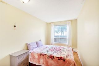 Photo 14: 109 1712 38 Street SE in Calgary: Forest Lawn Apartment for sale : MLS®# A1015198