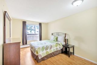 Photo 12: 109 1712 38 Street SE in Calgary: Forest Lawn Apartment for sale : MLS®# A1015198