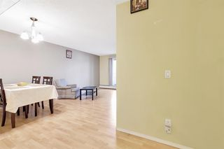 Photo 4: 109 1712 38 Street SE in Calgary: Forest Lawn Apartment for sale : MLS®# A1015198