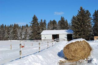 Photo 31: 393033 RR 5: Rural Clearwater County Attached Home for sale : MLS®# E4185292