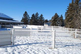 Photo 26: 393033 RR 5: Rural Clearwater County Attached Home for sale : MLS®# E4185292