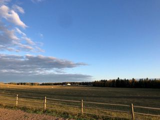 Photo 37: 393033 RR 5: Rural Clearwater County Attached Home for sale : MLS®# E4185292
