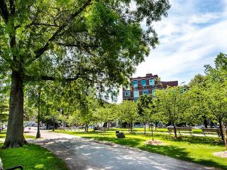 Photo 20: 429 901 W Queen Street in Toronto: Trinity-Bellwoods Condo for lease (Toronto C01)  : MLS®# C4941994