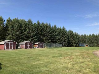 Photo 28: 263018 TWP RD 464: Rural Wetaskiwin County House for sale : MLS®# E4172929