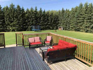 Photo 25: 263018 TWP RD 464: Rural Wetaskiwin County House for sale : MLS®# E4172929