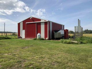 Photo 29: 263018 TWP RD 464: Rural Wetaskiwin County House for sale : MLS®# E4172929