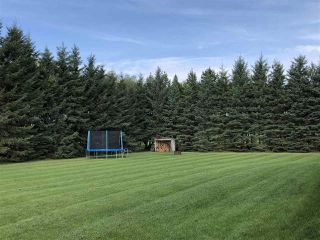 Photo 22: 263018 TWP RD 464: Rural Wetaskiwin County House for sale : MLS®# E4172929