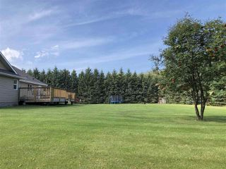 Photo 24: 263018 TWP RD 464: Rural Wetaskiwin County House for sale : MLS®# E4172929