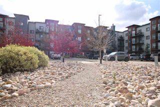 Photo 16: 208 396 SILVER_BERRY Road in Edmonton: Zone 30 Condo for sale : MLS®# E4176792