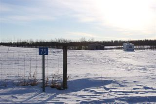 Photo 4: 75 22111 TWP RD 510: Rural Leduc County Rural Land/Vacant Lot for sale : MLS®# E4178651