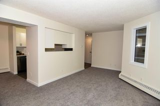 Photo 15: 213 2204 1 Street SW in Calgary: Mission Apartment for sale : MLS®# A1032440