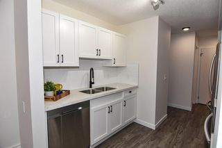 Photo 12: 213 2204 1 Street SW in Calgary: Mission Apartment for sale : MLS®# A1032440