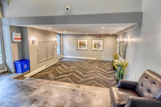 Photo 4: 213 2204 1 Street SW in Calgary: Mission Apartment for sale : MLS®# A1032440