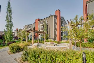 Photo 36: 3311 755 COPPERPOND Boulevard SE in Calgary: Copperfield Apartment for sale : MLS®# A1034974