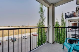 Photo 21: 3311 755 COPPERPOND Boulevard SE in Calgary: Copperfield Apartment for sale : MLS®# A1034974