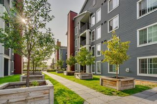 Photo 38: 3311 755 COPPERPOND Boulevard SE in Calgary: Copperfield Apartment for sale : MLS®# A1034974