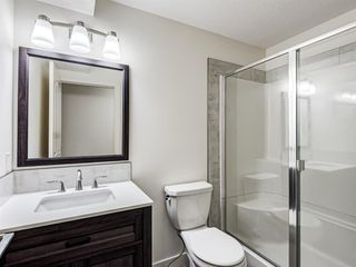 Photo 43: 233 Edgevalley Way NW in Calgary: Edgemont Detached for sale : MLS®# A1055738