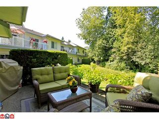 """Photo 10: 57 21579 88B Avenue in Langley: Walnut Grove Townhouse for sale in """"CARRIAGE PARK"""" : MLS®# F1218032"""