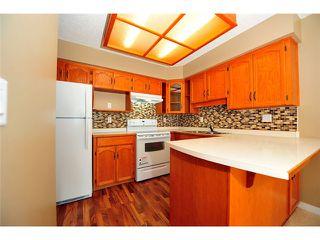Photo 4: # 309 22514 116TH AV in Maple Ridge: East Central Condo for sale : MLS®# V1041669