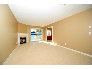 Photo 7: # 309 22514 116TH AV in Maple Ridge: East Central Condo for sale : MLS®# V1041669