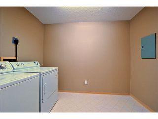 Photo 15: # 309 22514 116TH AV in Maple Ridge: East Central Condo for sale : MLS®# V1041669