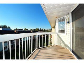 Photo 16: # 309 22514 116TH AV in Maple Ridge: East Central Condo for sale : MLS®# V1041669