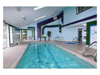Photo 17: # 309 22514 116TH AV in Maple Ridge: East Central Condo for sale : MLS®# V1041669