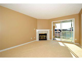 Photo 8: # 309 22514 116TH AV in Maple Ridge: East Central Condo for sale : MLS®# V1041669