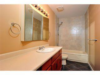 Photo 13: # 309 22514 116TH AV in Maple Ridge: East Central Condo for sale : MLS®# V1041669
