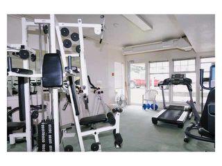 Photo 18: # 309 22514 116TH AV in Maple Ridge: East Central Condo for sale : MLS®# V1041669