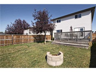 Photo 20: 440 STONEGATE Road NW: Airdrie Residential Detached Single Family for sale : MLS®# C3630680