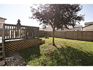 Photo 19: 440 STONEGATE Road NW: Airdrie Residential Detached Single Family for sale : MLS®# C3630680