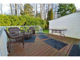 Photo 17: 424 CULZEAN PL in Port Moody: Glenayre House for sale : MLS®# V1101892