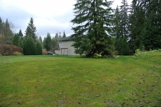 Photo 19: 33200 DEWDNEY TRUNK ROAD in Mission: Mission BC House for sale : MLS®# R2125300