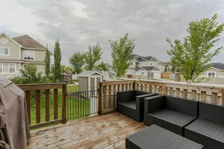 Photo 29: 2248 BLUE JAY LANDING in Edmonton: Zone 59 House for sale : MLS®# E4166578