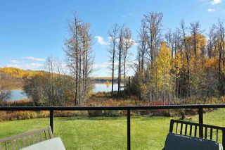 Photo 47: 480042 RR275: Rural Wetaskiwin County House for sale : MLS®# E4177906