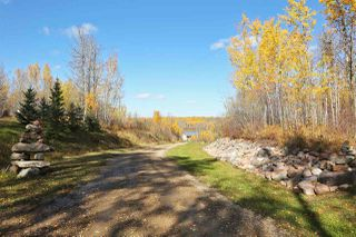 Photo 46: 480042 RR275: Rural Wetaskiwin County House for sale : MLS®# E4177906