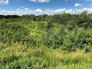Photo 4: 3 Rural Address in Rosthern: Lot/Land for sale (Rosthern Rm No. 403)  : MLS®# SK815748