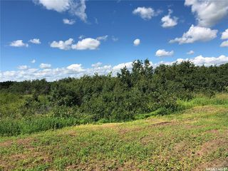 Photo 3: 3 Rural Address in Rosthern: Lot/Land for sale (Rosthern Rm No. 403)  : MLS®# SK815748